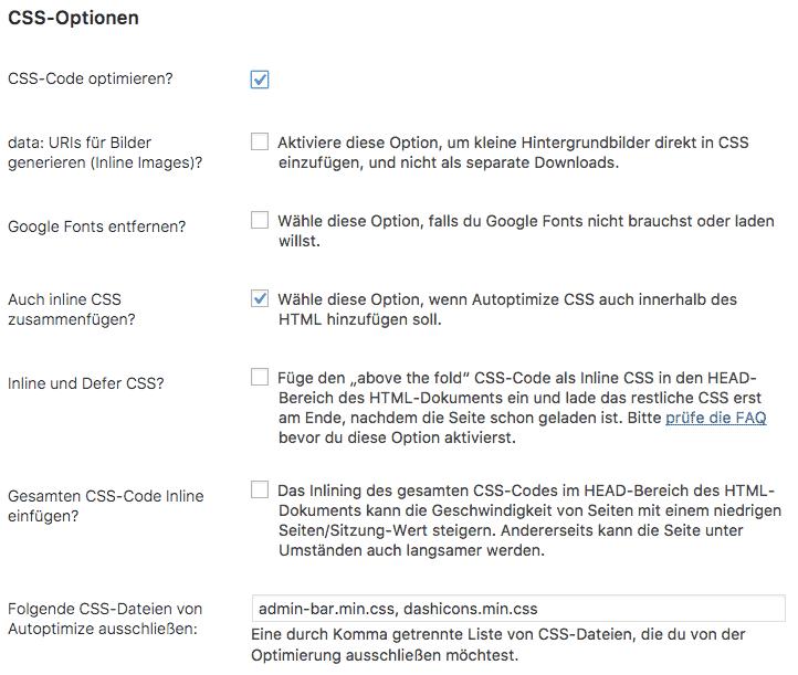 Google PageSpeed Insights Fehlermeldungen – Ausschnitt aus dem Optimierungsplugin Autoptimize