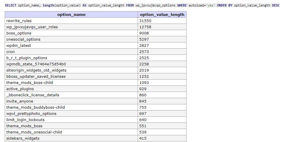 WordPress hohe Last: wp_options autoload query