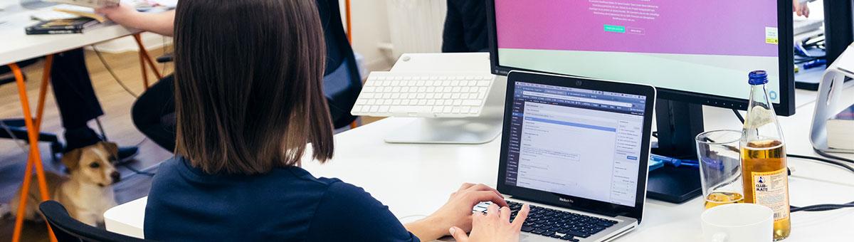 raidboxes wordpress news webdesigner zukunft